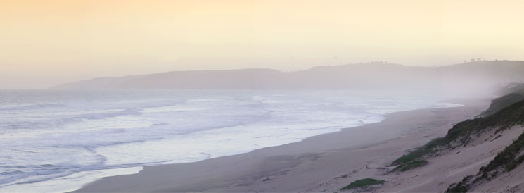 Gadding about on the Garden Route: The Wows and Wherefores of Wilderness – Plus Special Offer