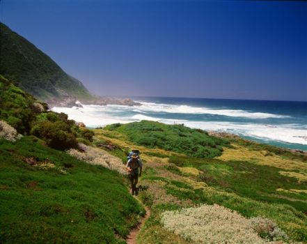 Why Not Wilderness for a Winner of a Garden Route Holiday? Only R744 P/P