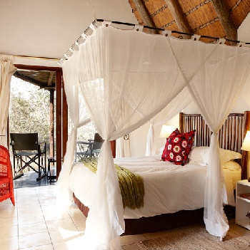 Cheery and Chipper is Cheetah Plains: Good Old Safari Lodge Flaunts Fresh Kit