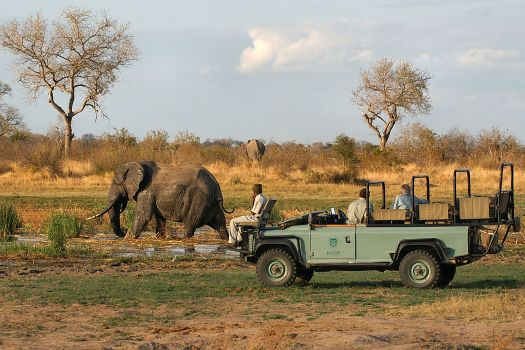 How Does One Tell a Bumper Safari From the Rest? A: By What Guests Say Who've Been-There-Done-That