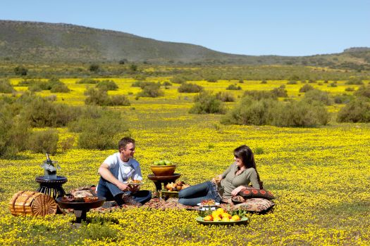 Bushmans Kloof Springs to Life with Flowers and a Tantalising New Summer Menu