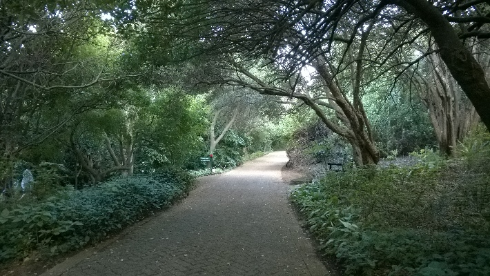 Can we Lead you Down the Garden Path? South Africa's National Botanical Gardens