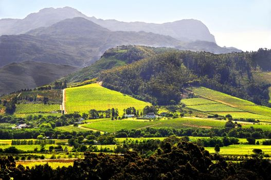 Peddling, Casting a Line & Gadding About in Franschhoek: Some Things To Do in the Area