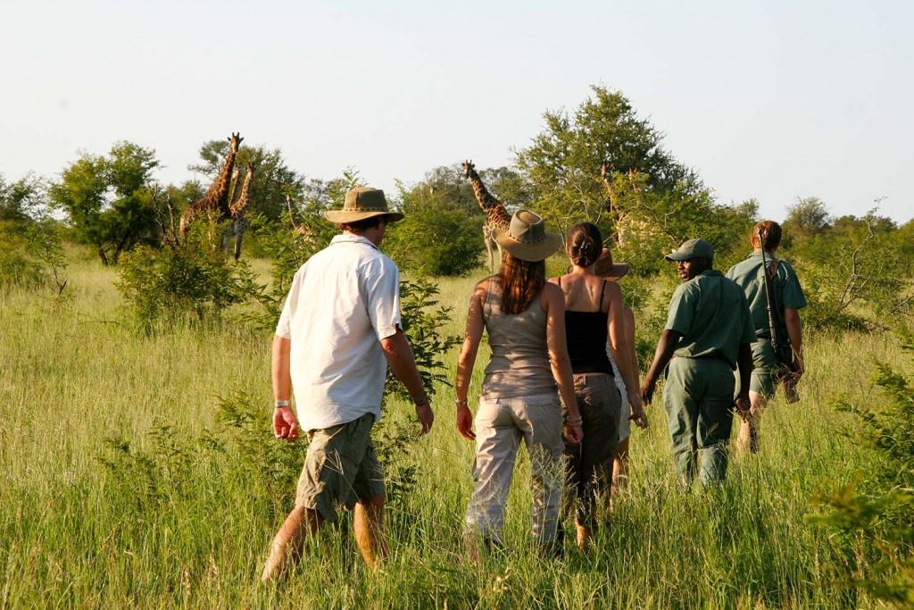 luxury walking safaris south africa