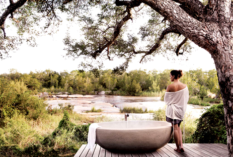 Five Superfine South African Safari Destinations for a Honeymoon