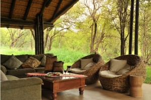 Soak up the beauty of the Pilanesberg Game Reserve