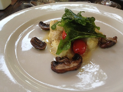 Much More than Wildlife at Camp Jabulani. Try the Wild Mushroom & Roast Cherry Tomato Gnocchi