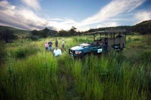 Shepherd's Tree Game Lodge Game Drive Stop, Pilanesberg