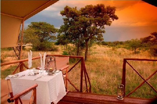Overlooking the golden plains at Kwafubesi tented Camp