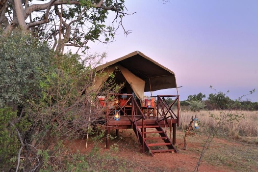 One for the Locals: A Tented Safari in Limpopo that's Great Luck for your Buck