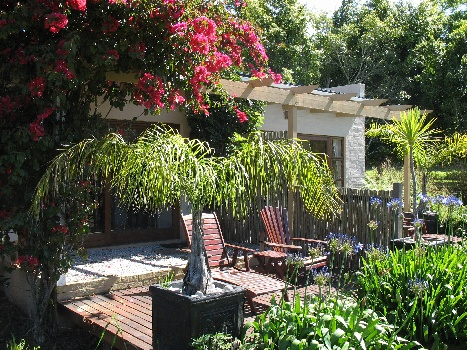 A Moment or Two of Grace on the Garden Route: Commune with the Lilies at Lily Pond Country Lodge