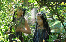 The Faerie Sanctuary in Swellendam