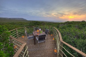 An intimate sitting spot in the Grootbos Private Nature Reserve, Western Cape