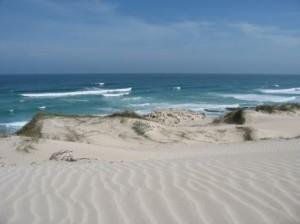 Unspoiled De Hoop Nature Reserve, Western Cape
