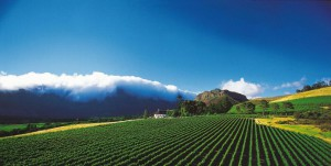 Mont Rochelle Hotel & Mountain Vineyards in the Franschhoek Area of the Western Cape offers five-star lodgings in a supreme setting
