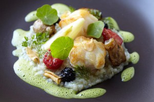 Cellars Hohenort greenhouse_risotto