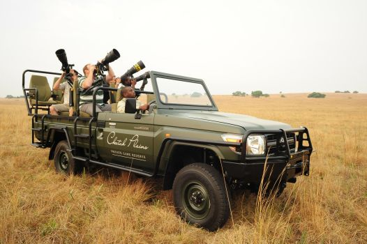 Cheetah Plains Game Reserve - professional photographic safaris