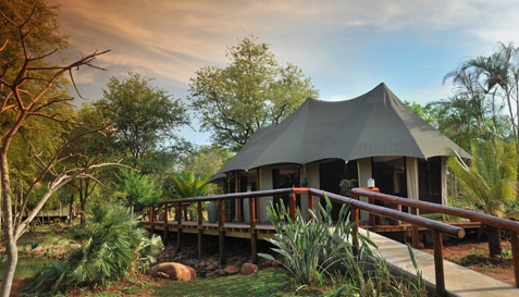 Chisomo Safari Camp in Limpopo - an appealing tented safari
