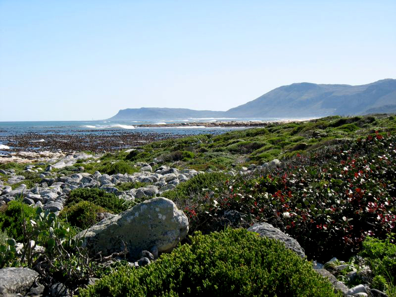 Sightseeing in Cape Town Cape Point South Africa
