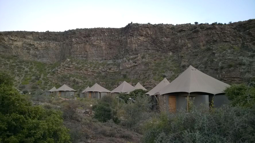 A Day in the Luxurious Life of Dwyka Tented Lodge, Sanbona Wildlife Reserve Western Cape