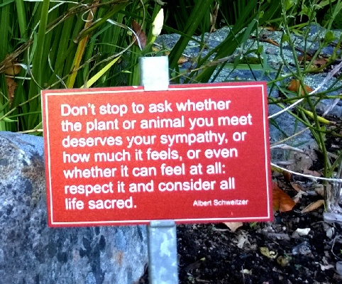 Kirstenbosch Garden of Extinction: Waymarks of Wisdom for our Planet