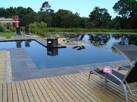 Lily Pond Zen-style Pool