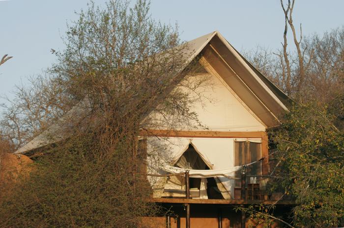 Luxury safari retreats with hammocks