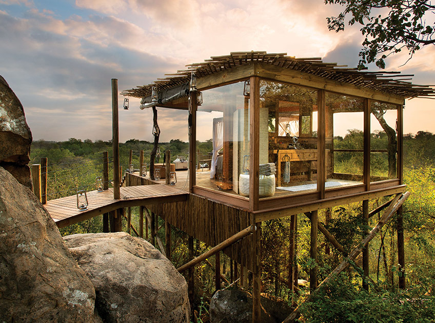 Treehouse Accommodation Mpumalanga South Africa