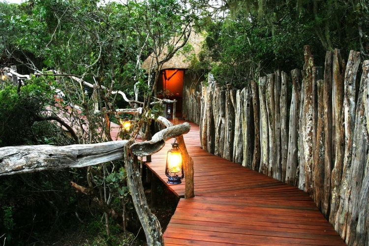 treehouse and tree canopy getaways in South Africa