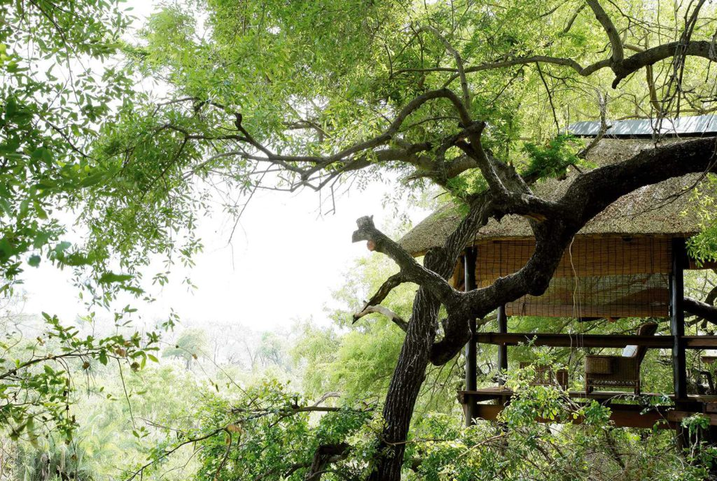 treehouse and treetop accommodation in South Africa