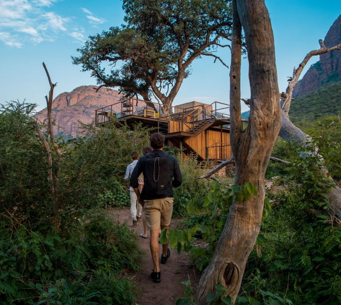 treehouse and treetops accommodation South Africa