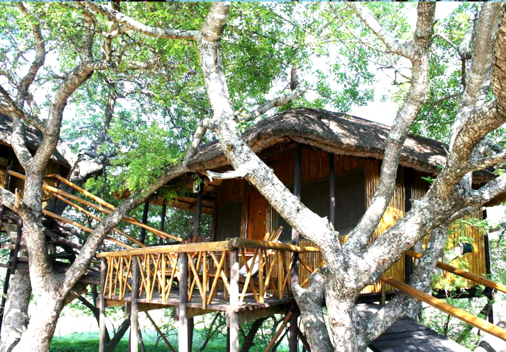 Treetop Lodges Treehouse Getaways South Africa