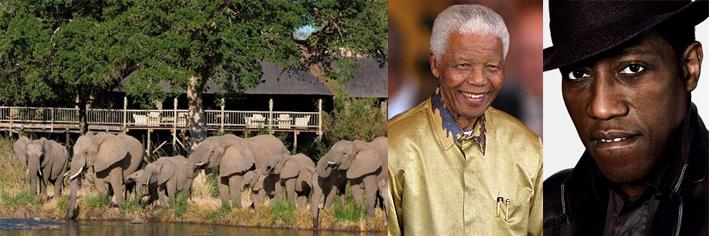 Celebrity safaris South Africa