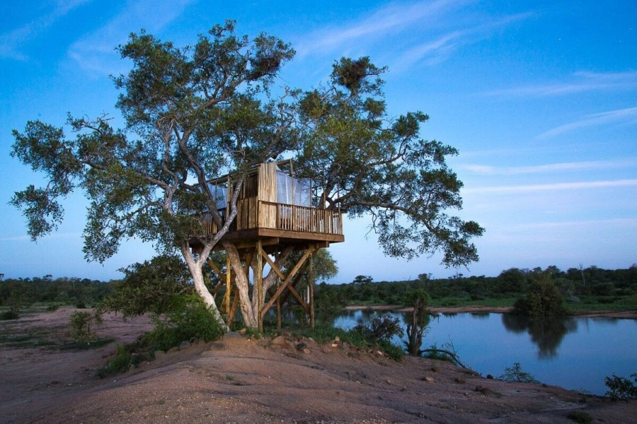 treehouse sleepout in Timbavati wilderness Umlani Bushcamp
