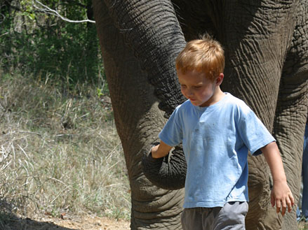 South Africa's New Immigration Regulations Relating to Travel with Children Effective 1 June 2015