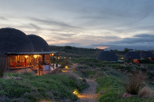 Western Cape and Garden Route safaris