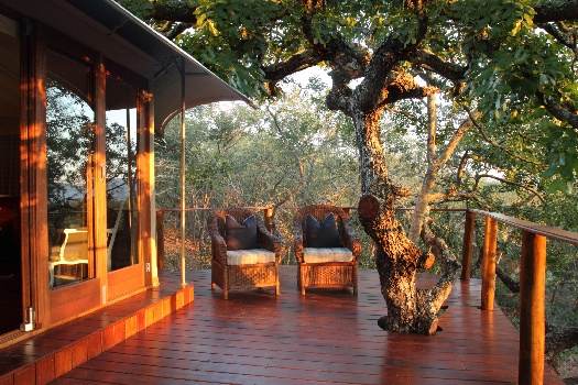 The 'Fencesitter's' Safari in South Africa: Luxury Safari Lodges For People Preferring a Fenced Camp
