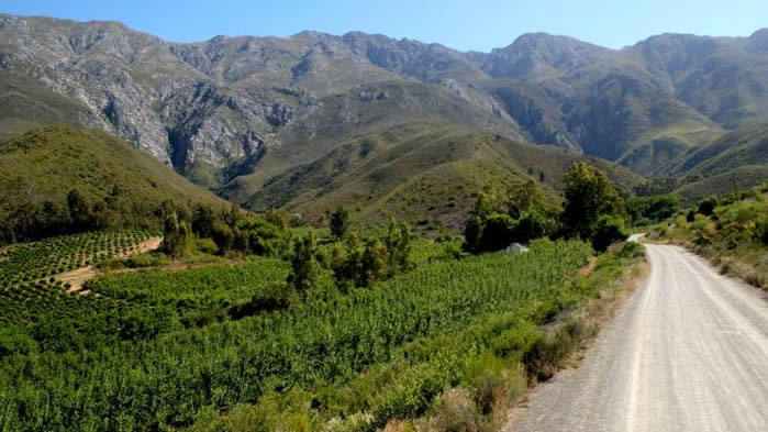 Route 62 South Africa the longest wine route in the world