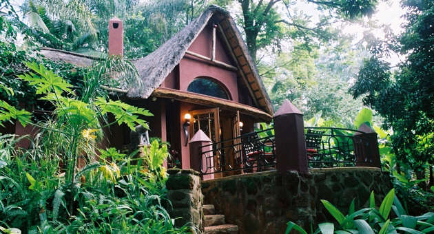 forest getaways and accommodation South Africa
