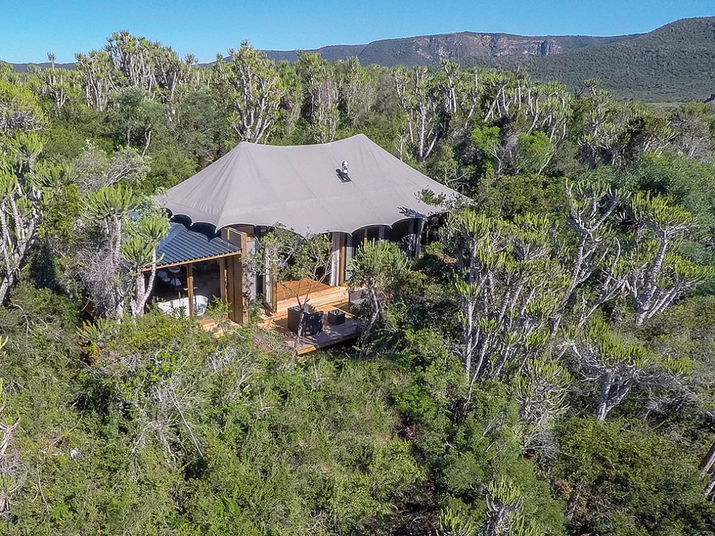 5 Handpicked Luxury Tented Safaris in the Cape