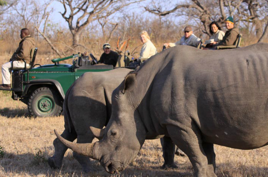 Top luxury travel bucket list attractions in South Africa