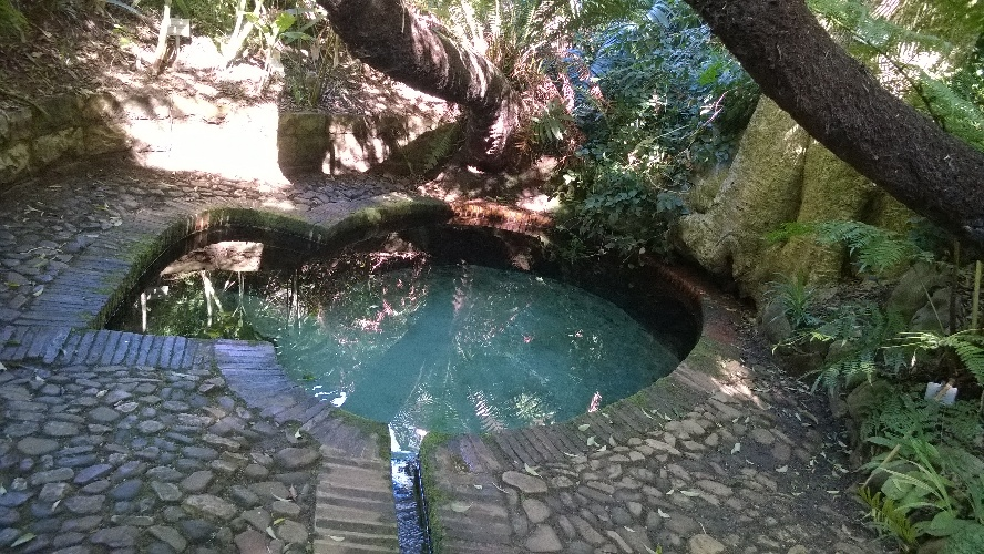 Cool Water and Nature Spots for Hot Days in Cape Town