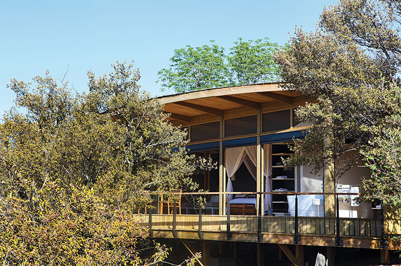 Multigenerational travel and sole-use safari accommodation