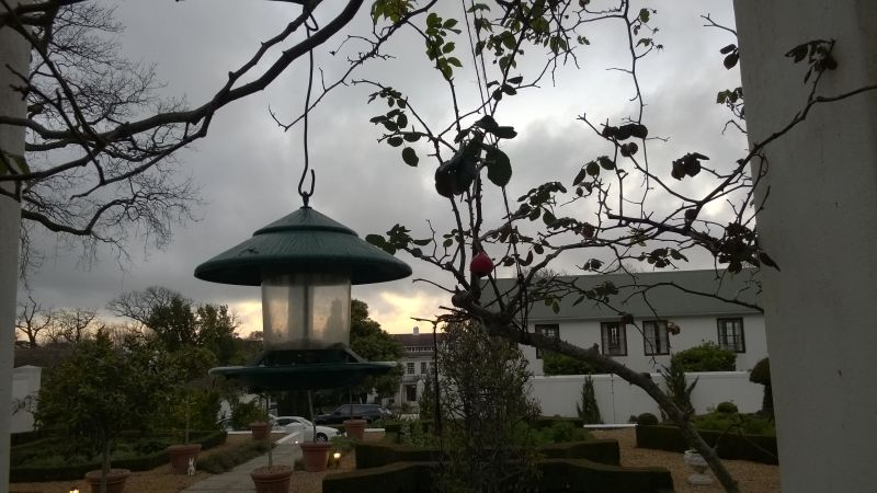 The garden at The Cellars-Hohenort Cape Town