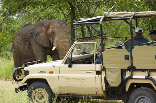Luxury private safari accommodation Kruger National Park