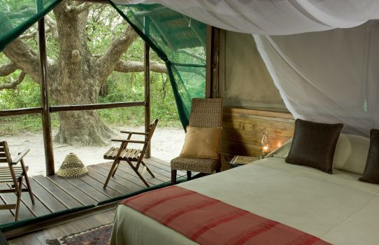 kosi-forest-room-int-3