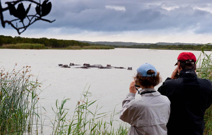 Luxury lodges in and near isimangaliso Wetland Park