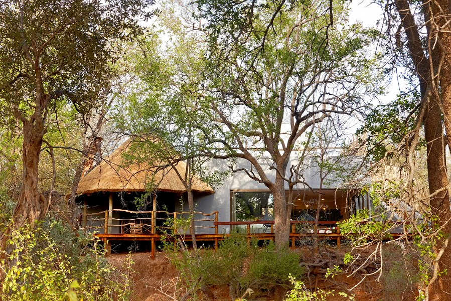 Luxury Experiential Travel in South Africa: How To Steep Yourself Deeply in the Wilderness