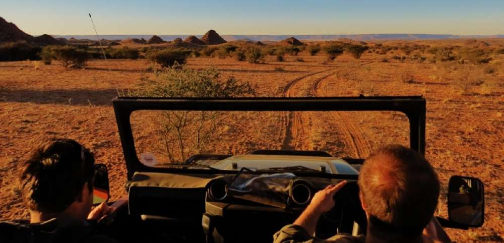 Luxury Experiential Travel in South Africa: How To Steep Yourself Deeply in Conservation