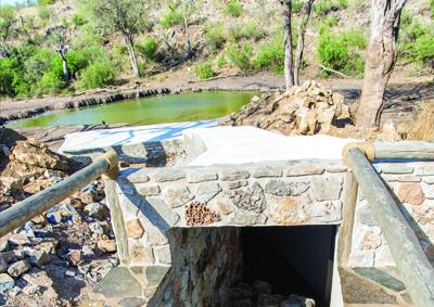 photographic safaris south africa underground hides